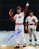Pete Rose Cincinnati Reds Autographed Photo (Hand Signed Collectable) Photo