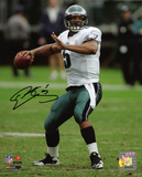 Donovan McNabb Philadelphia Eagles -Looking Downfield Photo