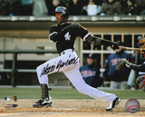 Alexei Ramirez Chicago White Sox Autographed Photo (Hand Signed Collectable) Photo