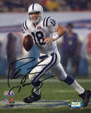 Peyton Manning Indianapolis Colts - Super Bowl XLI Action Photo