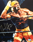 Hulk Hogan Closeup graph Photo