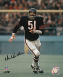 Dick Butkus Chicago Bears - Running in Blue Jersey Photo