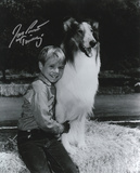 Jon Provost -Lassie with Timmy Inscription Autographed TV Photo (Hand Signed Collectable) Photo