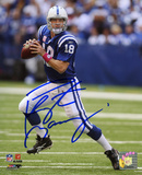 Peyton Manning Indianapolis Colts Breast Cancer Awareness Autographed Photo (H& Signed Collectable) Photo