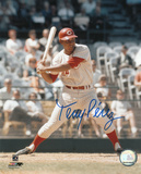 Tony Perez Cincinnati Reds Photo