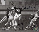 Dick Butkus Chicago Bears - Swatting Unitas Pass Autographed Photo (Hand Signed Collectable) Photo