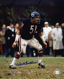 Dick Butkus Chicago Bears - Ready to Tackle Autographed Photo (Hand Signed Collectable) Photographie
