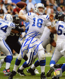 Peyton Manning Indianapolis Colts - Throwing vs. Texans Photo