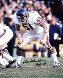 Dick Butkus Chicago Bears -In Stance- with HOF 79 Inscription Photo
