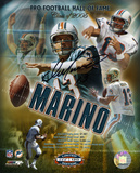 Dan Marino Miami Dolphins 2005 Hall of Fame Collage Autographed Photo (Hand Signed Collectable) Photo