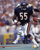 Otis Wilson Chicago Bears Autographed Photo (Hand Signed Collectable) Foto