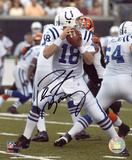 Peyton Manning Indianapolis Colts - Both Hands on Ball Autographed Photo (Hand Signed Collectable) Photo