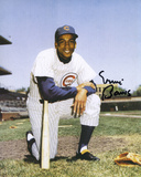 Ernie Banks Chicago Cubs Cardboard Autographed Photo (Hand Signed Collectable) Photo