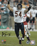 Brian Urlacher Chicago Bears - Arms Up Autographed Photo (Hand Signed Collectable) Photo