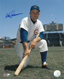 Don Zimmer Chicago Cubs Autographed Photo (Hand Signed Collectable) Photo