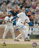 Mickey Morandini Chicago Cubs Autographed Photo (Hand Signed Collectable) Photo