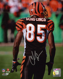 Chad Johnson Cincinnati Bengals - Ocho Cinco Back Shot Photo