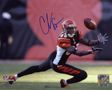 Chad Johnson Cincinnati Bengals - Diving For Catch Autographed Photo (Hand Signed Collectable) Photo