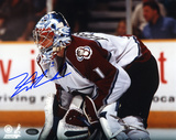 David Aebischer Colorado Avalanche Autographed Photo (Hand Signed Collectable) Photo
