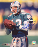 Dan Marino Miami Dolphins Photo