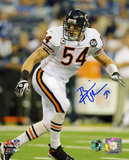 Brian Urlacher Chicago Bears - Action Autographed Photo (Hand Signed Collectable) Photo