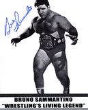 Bruno Sammartino WWE Autographed Photo (Hand Signed Collectable) Photo