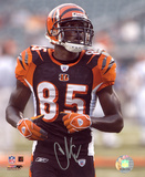 Chad Johnson Cincinnati Bengals Autographed Photo (Hand Signed Collectable) Photo