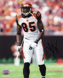 Chad Johnson Cincinnati Bengals -Pose Autographed Photo (Hand Signed Collectable) Photo