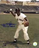 Minnie Minoso Chicago White Sox Autographed Photo (Hand Signed Collectable) Photo