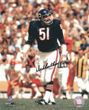 Dick Butkus Chicago Bears - Ready at Line of Scrimmage Autographed Photo (Hand Signed Collectable) Photo