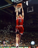 Kirk Hinrich Chicago Bulls Dunk Photo