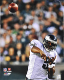 Donovan McNabb Philadelphia Eagles Foto