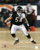 Brian Urlacher Chicago Bears - Windy City - 16x20 Autographed Photo (Hand Signed Collectable) Photo