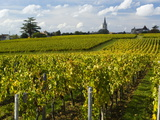 Vineyards, St. Emilion, Gironde, France, Europe Lámina fotográfica por Robert Cundy