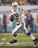 Peyton Manning Indianapolis Colts Super Bowl XLI Rollout Autographed Photo (H& Signed Collectable) Photo