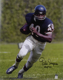 Gale Sayers Chicago Bears  with HOF &#39;77 Inscription Photo