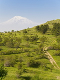 Path Leading to Mount Ararat, Armenia, Caucasus, Central Asia, Asia Photographic Print by Michael Runkel