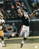 Brian Urlacher Chicago Bears - Interception vs. Packers Autographed Photo (Hand Signed Collectable) Photo