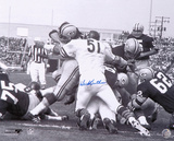 Dick Butkus Chicago Bears - Packer Pile Autographed Photo (Hand Signed Collectable) Photo