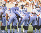 Dan Marino Miami Dolphins -Huddle- Autographed Photo (Hand Signed Collectable) Photo