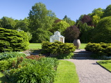 Botanical Gardens, Gothenburg, Sweden, Scandinavia, Europe Photographic Print by Robert Cundy