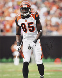 Chad Johnson Cincinnati Bengals -Backward Catch- Autographed Photo (Hand Signed Collectable) Photo