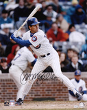 Ryne Sandberg Chicago Cubs Autographed Photo (Hand Signed Collectable) Photo