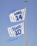 Ernie Banks and Ron Santo Chicago Cubs  Retired Number Flag Photo