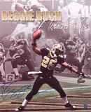 Reggie Bush New Orleans Saints - 4 TD's Autographed Photo (Hand Signed Collectable) Photo