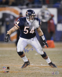 Brian Urlacher Chicago Bears 16x20 Autographed Photo (Hand Signed Collectable) Photo