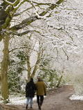 Hampstead Heath in the Snow, London, England, United Kingdom, Europe Photographic Print by Alan Copson