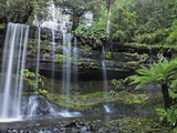 Russell Falls, Mount Field National Park, UNESCO World Heritage Site, Tasmania, Australia, Pacific Fotografisk tryk af Jochen Schlenker