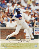Sammy Sosa Chicago Cubs Photo
