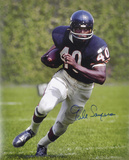 Gale Sayers Chicago Bears Photo